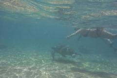 sri-lanka-coral-sanctuary