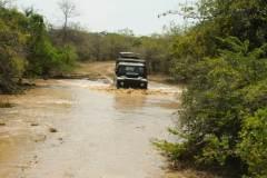 safari-in-sri-lanka-12
